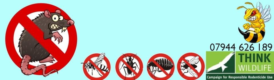 Ceredigion Pest Control - 07944 626189